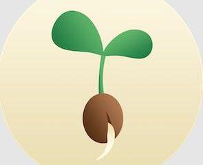 Seedtime App